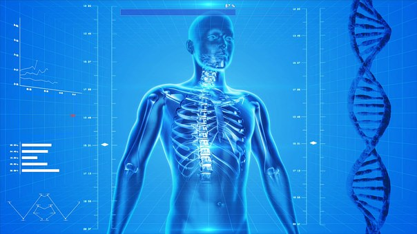 骨格診断®というオシャレに役立つ方法があります!