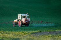 綿素材と農薬について|エシカルを考える